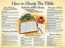 How To Study The Bible (Laminated)   20x26
