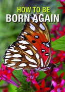 How to be Born Again Pack of 50