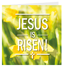 Jesus is Risen Charity Easter Cards Pack of 5