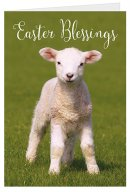Easter Blessings Charity Easter Cards Pack of 5