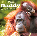 For You Daddy on Father's Day - Single Card