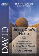 David - After God's Heart: Spring Harvest Bible Study Workbook