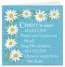 Christ is Risen Easter Cards - Pack of 4