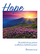 Pocket Hope 2019 Scripture Diary