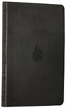 ESV Thinline Bible: Midnight Flame, Imitation Leather, Anglicised
