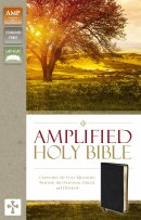 Amplified Thinline Holy Bible: Black, Bonded Leather