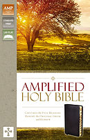 Amplified Thinline Holy Bible: Black, Bonded Leather, Thumb Indexed