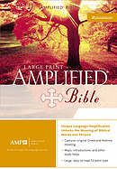 Amplified Large Print Bible: Burgundy, Bonded Leather