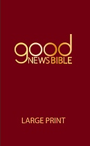 Good News Bibles | Free Delivery Eden co uk