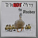 It Is Not Okay to Disobey: Duck Ponder Series