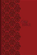 King James Study Bible Personal Size  Lt