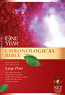 NLT One Year Chronological Slimline Bible: Hardback, Large Print