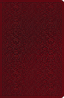 ESV Value Compact Bible (Trutone, Ruby, Vine Design)
