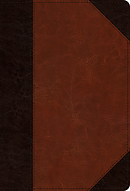 ESV Large Print Compact Bible (TruTone, Brown/Cordovan, Port