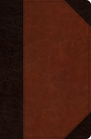 ESV Verse-by-Verse Reference Bible (TruTone, Brown/Cordovan,
