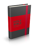 NIV Grey Pocket Notebook Bible