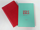 NIV Pocket Bible Red