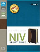NIV Study Bible Burgundy Tan Imitation Leather