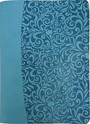 Everyday Life Amplified Bible, Turquoise