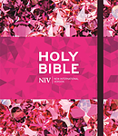 NIV Ruby Journalling Bible