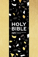 NIV Pocket Gold Soft-tone Bible with Zip