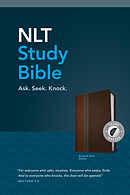 NLT: Study Bible, Brown Slate, Leatherlike, Indexed