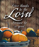 Give Thanks Thanksgiving Bulletin Large (Pkg of 50)