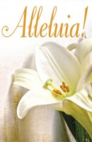 Alleluia! Easter Lilies Bulletin (Pkg of 50)