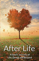 After Life: A Soul\'s Journey of Life, Death and Beyond