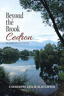 Beyond the Brook Cedron: An Inspirational Journey