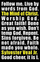 The Mind of Christ: What Did Jesus Say - Gospel of Matthew