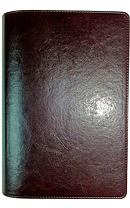 NLT Waterproof Bible Brown