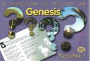 Puzzles on Genesis Puzzle Book