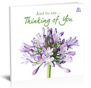 Just to Say… Thinking of You book