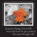 Seasons Change Magnetic Picture Frame