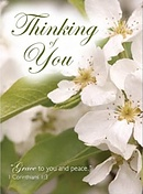 Thinking of You Cards - Pack of 4