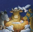 Cosy Nativity Scene Charity Christmas Cards Pack of 10