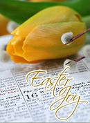 Easter Joy Tulip Cards - Pack of 4