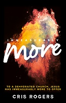 Immeasurably More Theme Book & Guide
