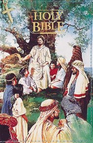 KJV Childrens Seaside  Bible: Hardback