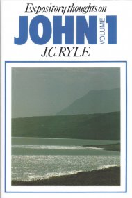 John : Vol 1: Expository Thoughts