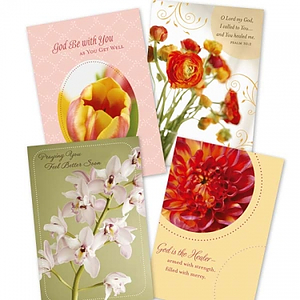 Get Well - Budding Hope - 12 Boxed Cards