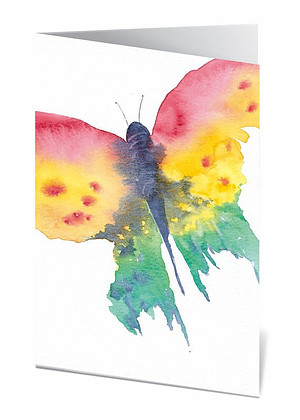 6-in Butterfly Greeting Cards