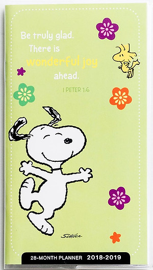 Peanuts - Wonderful Joy - 2018 28-Month Planner
