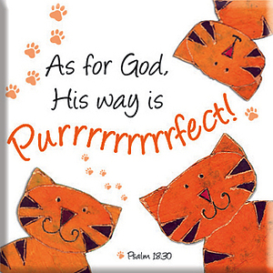 God's Way is Purrrfect Magnet