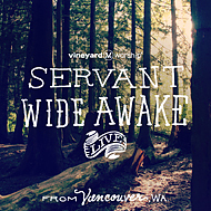 Servant Wide Awake CD