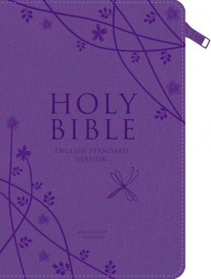 ESV Anglicised Compact Bible: Purple, Gift Edition with Zip