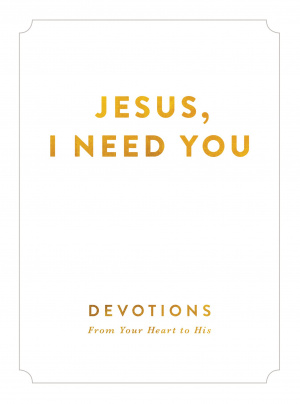 Jesus I Need You