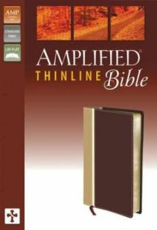 Amplified Thinline Bible