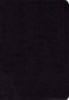 KJV and Amplified Side-by-side Bible Bonded Leather Black